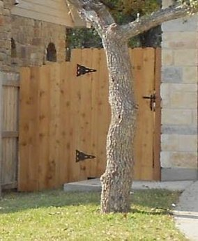 Fence, Fencing in Arlington, TX
